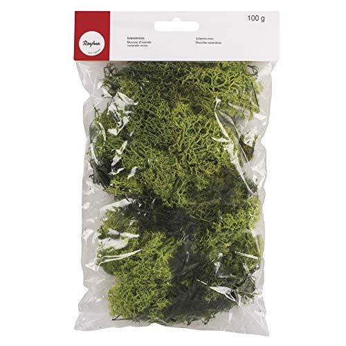 Rayher 8503211 Islandmoos, hellgrün, Btl. 100 g, echtes Natur-Moos (Island), konserviert, gereinigt, zum Basteln, Deko-Moos zu Ostern, Weihnachten, für den Modellbau
