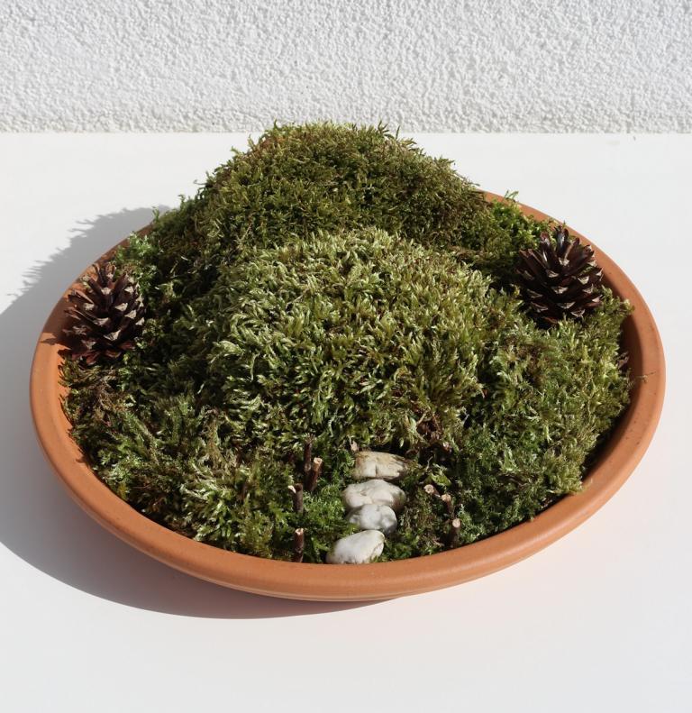 Hobbit Miniaturgarten mit Dekoration aus Fimo selber machen: ein echter Hingucker für Garten und Balkon