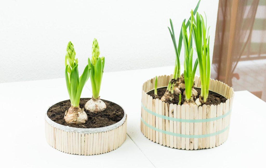 DIY Blumentöpfe selber machen - einfache und günstige Upcycling Idee, schöne Deko für den Frühling, aber auch ein tolles Geschenk zum Muttertag, Geburtstag