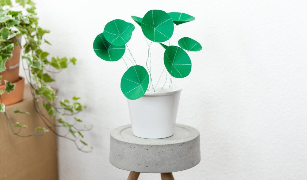 Chinesischen Geldbaum aus Papier basteln – schöne DIY Deko Idee