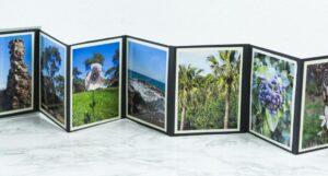 DIY Foto Leporello aus Papier basteln